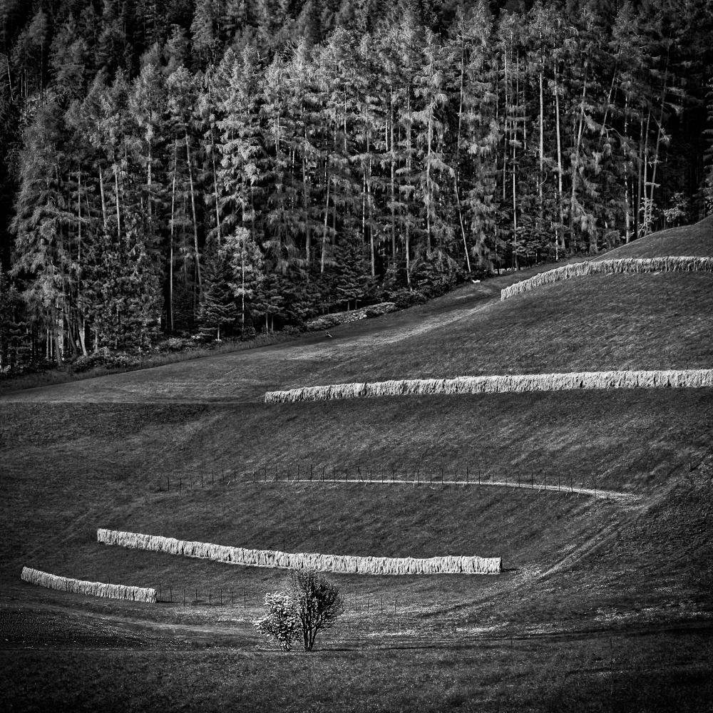 Tirol-9